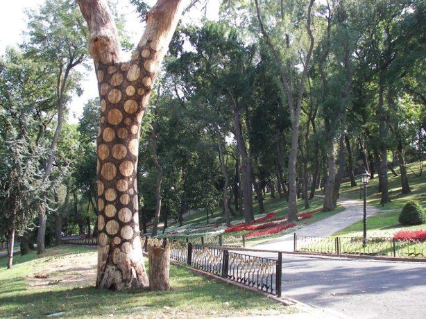 Parque Emirgan