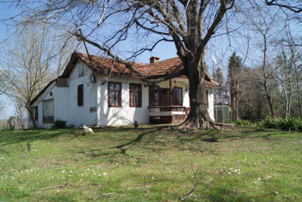 Adampol Istanbul